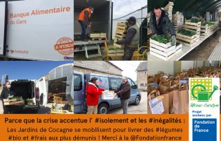 Dispositif exceptionnel de distributions alimentaires solidaires